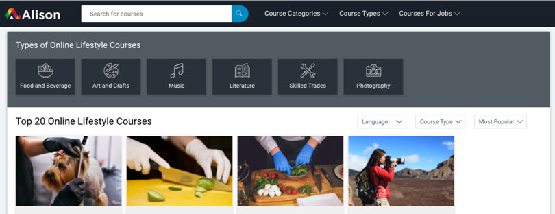 Image Category Alison Lifestyle Courses and Diplomas