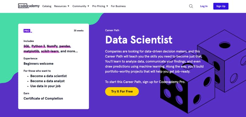 Image Codecademy Courses - Career Paths