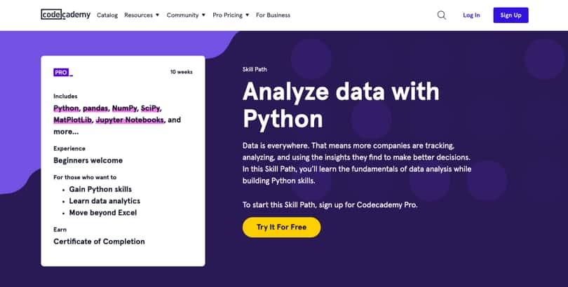 Image Codecademy Courses - Skill Tracks