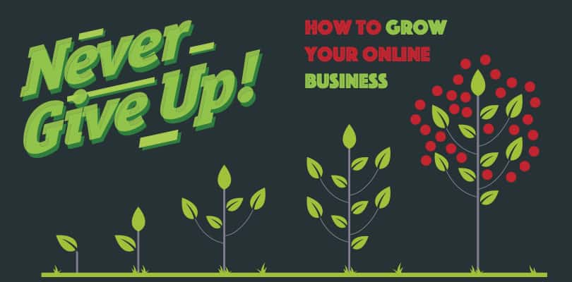 Image How To Grow Your Online Business - Tips and Tricks