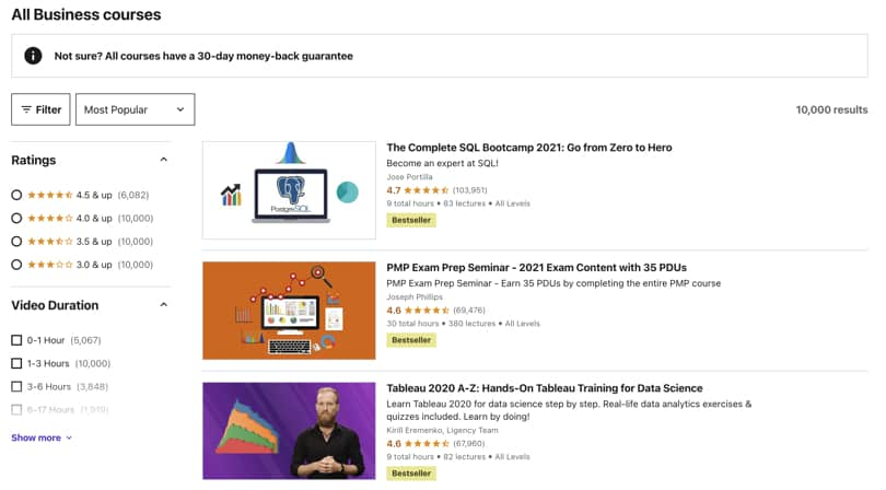 Image Udemy Review - Overview Search Results and Navigation